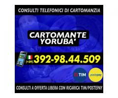 ()*.:。___ Studio di Cartomanzia Cartomante Yoruba'__.。.:*()