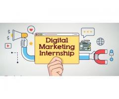 Digital Marketing Summer Internship In Jaipur
